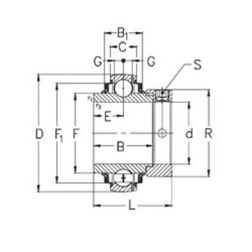 Bearing GNE60-KRRB NKE