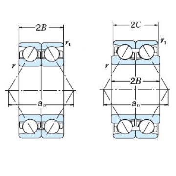 Bearing NSK Ball BT280-51 DF